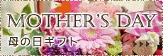 愛知県愛西市の花屋【花のひより園】の母の日ギフト